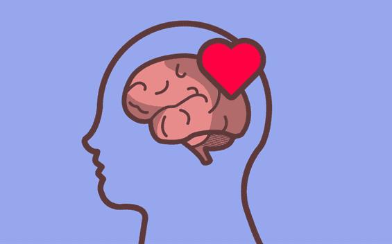 Le cœur sur le cerveau d'une personne