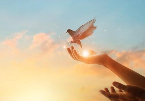 Des mains avec une colombe pour représenter comment atteindre le bonheur dans les moments difficiles